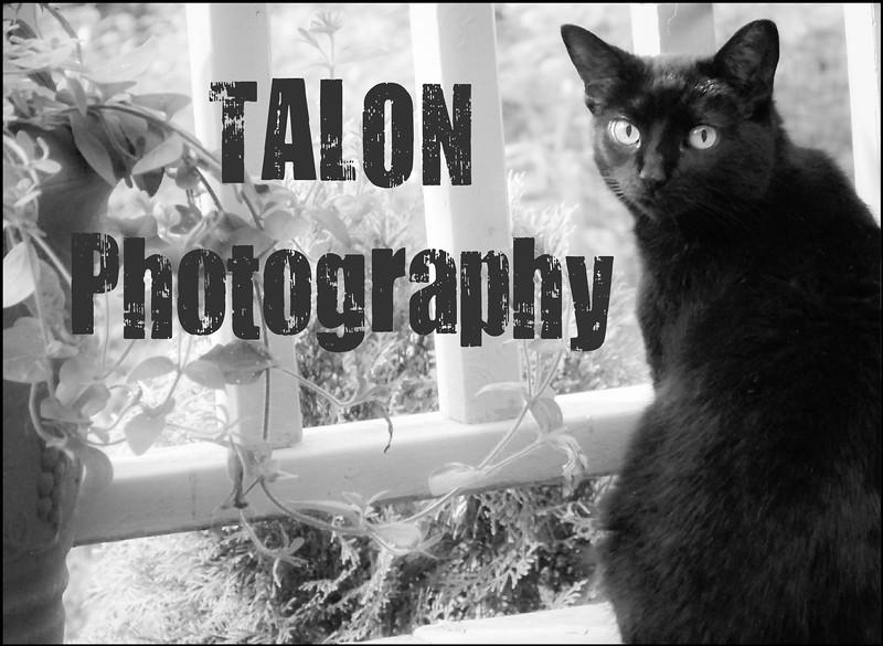 TALON PHOTO MISSY.jpg