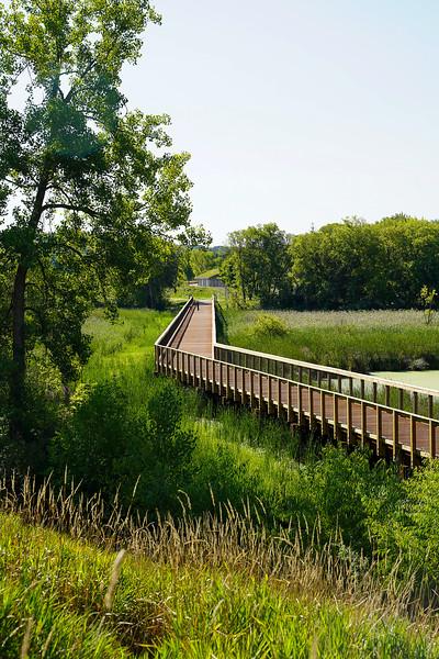 Arboretum August 2021-4.JPG