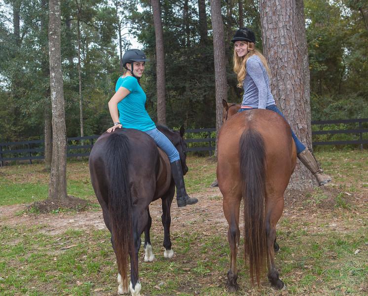 horses & staff-333.jpg