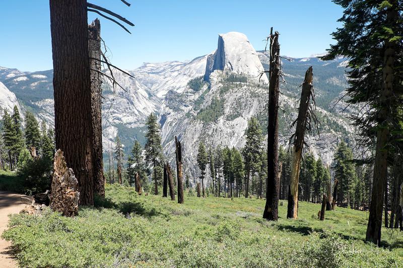 20140628_panoramic trail_0912.jpg