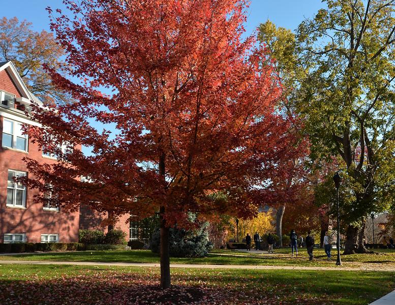 campus2560.jpg