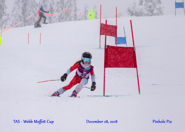 2018-2019 TAS Hosted Races