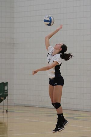 Saline Hornets Volleyball