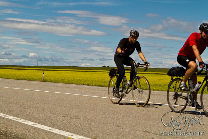 Riding by the Canola FIelds