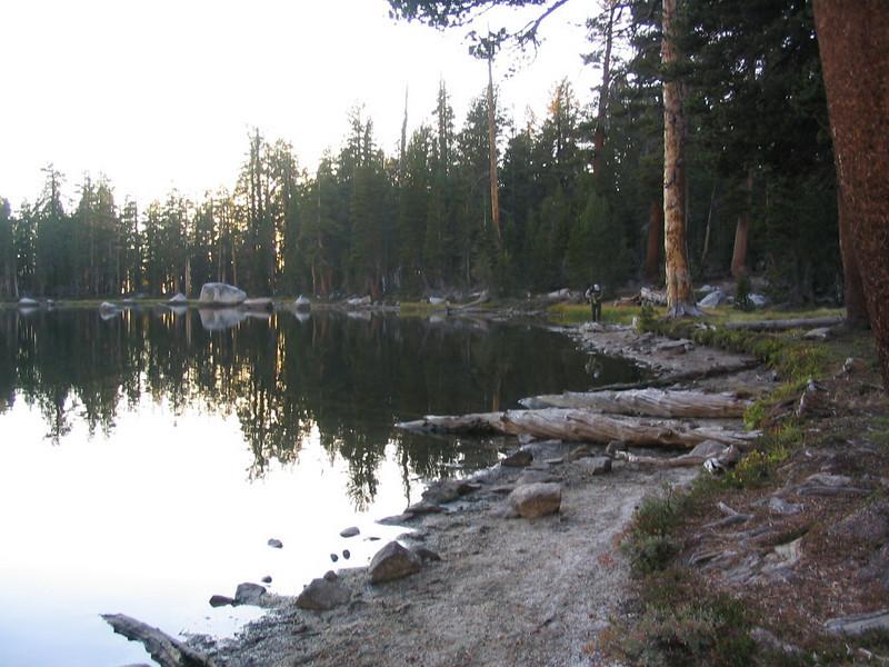 SequoiaSep04-21.jpg