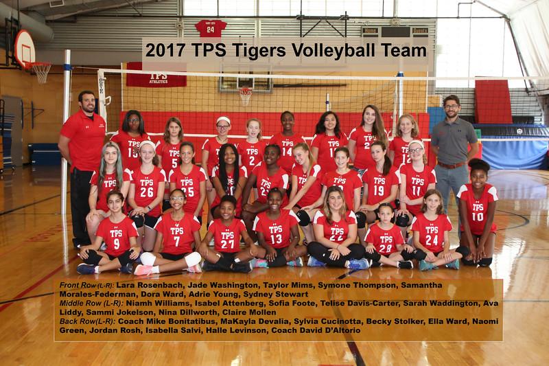 Volleyball2017.jpg