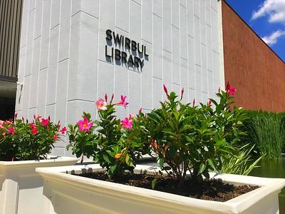 Swirbul Library