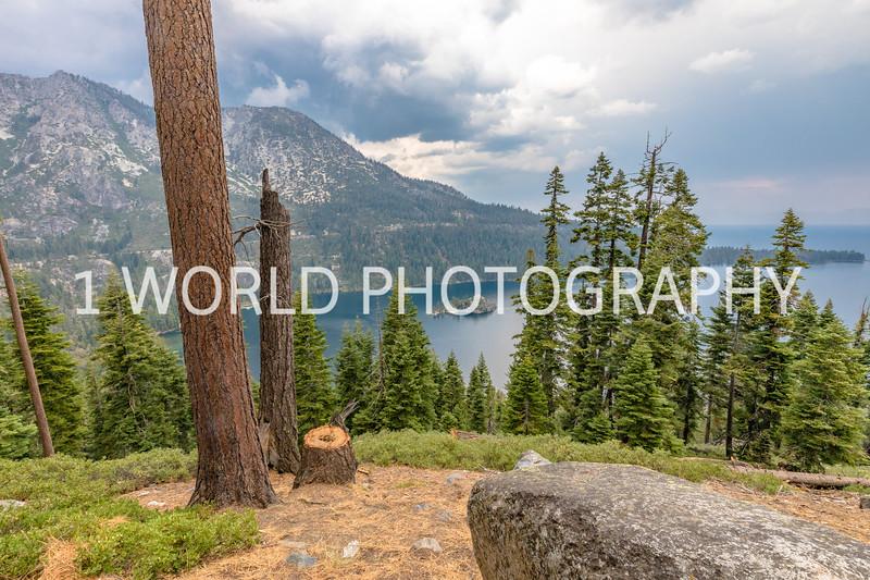 San Fran_Lake Tahoe Trip 2017-212-22.jpg