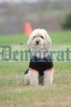 SW Dog Costume Contest