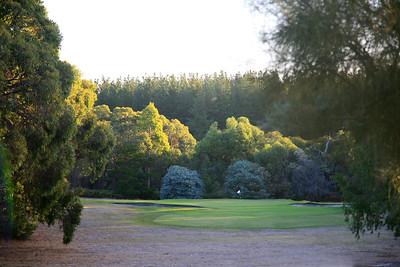 Millicent Golf Club