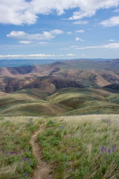 Umtanum Creek Canyon - May 2012