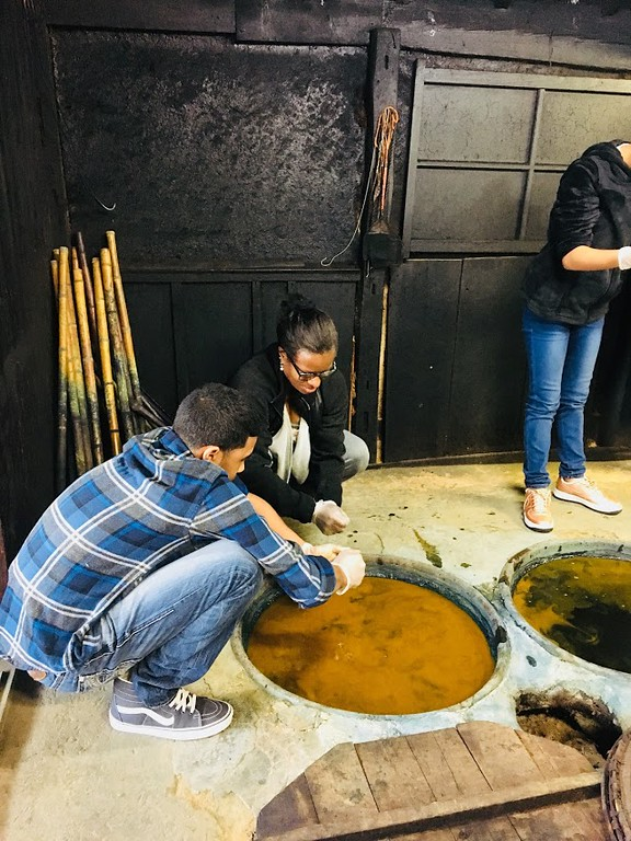 . Ten students, five from Pontiac Middle School and five from Pontiac�s International Technology Academy, traveled in October, 2017 for 10-days to Kusatsu, Shiga, Japan, staying with host families, learning the culture and expanding their views of the world.