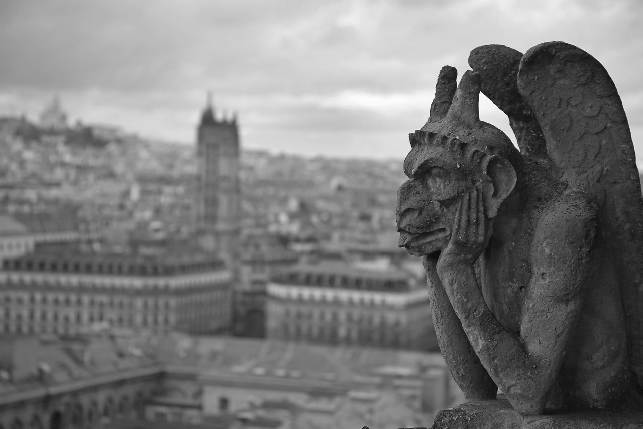 The view from atop Notre Dame Cathedral