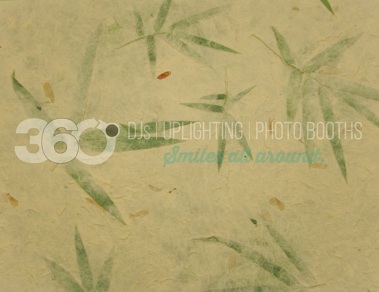 Bamboo Paper_batch_batch.jpg