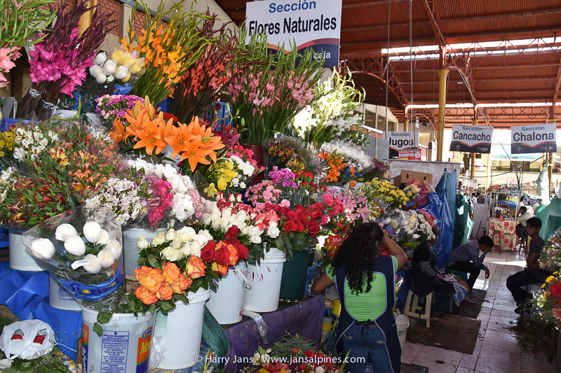 flowers at market in Arequipa