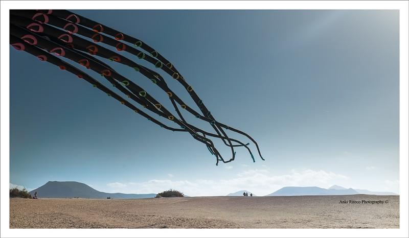 Kite Festival Fuerteventura 2016