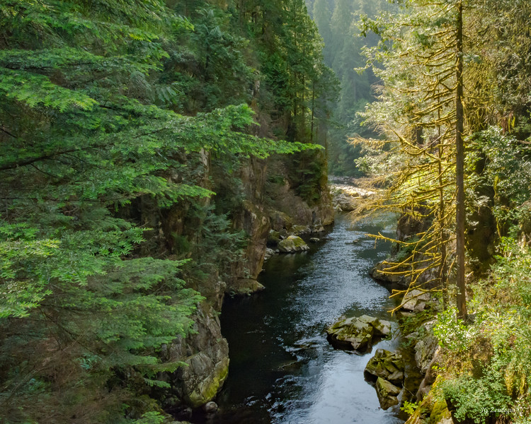 Capilano River Canyon