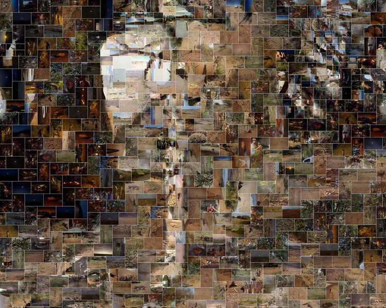 Cheetah in Namibia Photo Mosaic