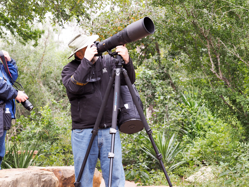 man birdwatching through a scope