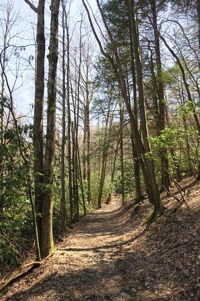 Ridge Trail - 3,200'