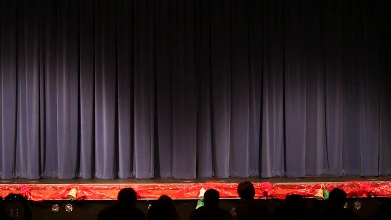 Talent Show Westpark 2015
