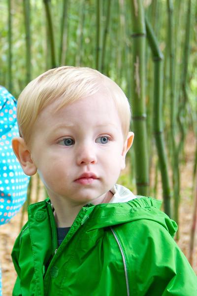 2013-05-26 Clara, Kieran & Lucas visit Bamboo Grove at Avant