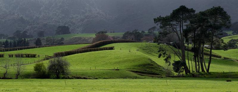 NZ Countryside.jpg