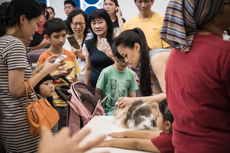 VividSnaps-The-Seletar-Mall-CAT-Dress-Up-Contest-104.jpg
