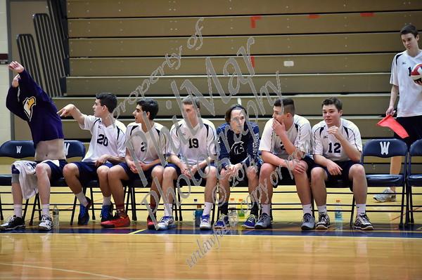 Wyomissing vs Schuylkill Valley Boys Volleyball 2015