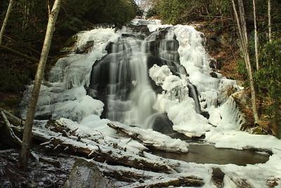 Lower Higgins Creek