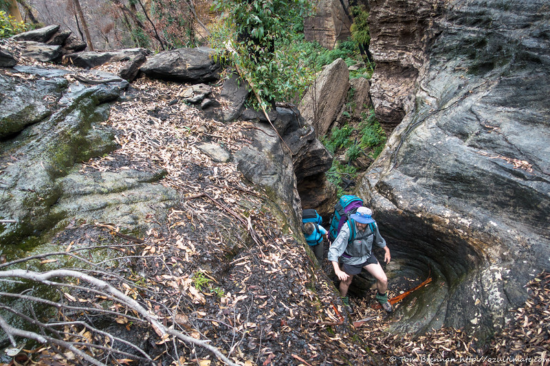 Scrambling up a mini canyon to get out of the creek