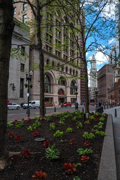 Boston-308.jpg