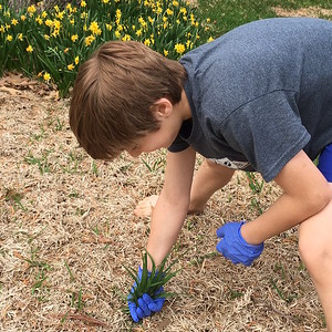 family-matters-pulling-weeds-cleaning-house-and-other-fun-things-to-do-this-spring