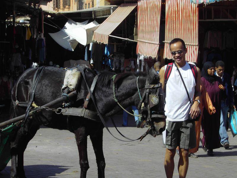 Jimmy_Horse.jpg
