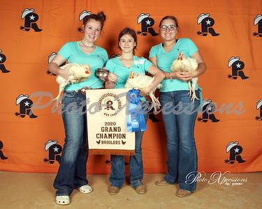 Chickens Auction