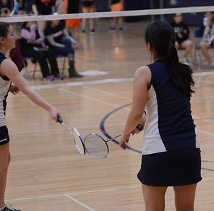 OE Badminton 2014