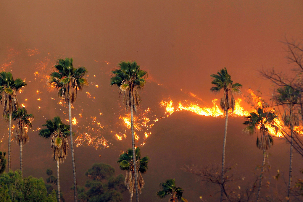 . A wildfire burns in the hills just north of the San Gabriel Valley community of Glendora, Calif. on Thursday, Jan 16, 2014. (AP Photo/Nick Ut)