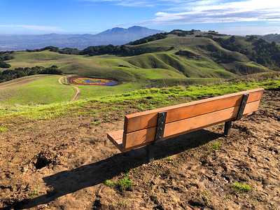 Briones Park: Jan 1, 2020