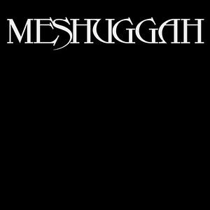 MESHUGGAH (SWE)