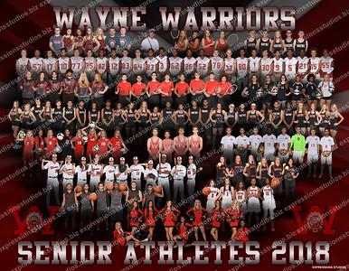 All Seniors 2018