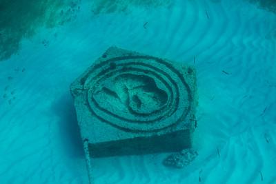 2017 05 07 Cancun Reef Photos