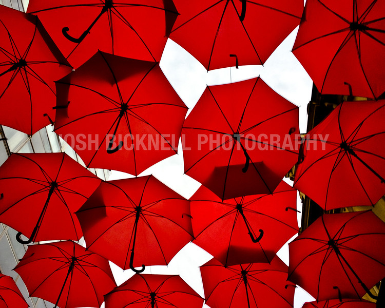 Under the Red Umbrellas