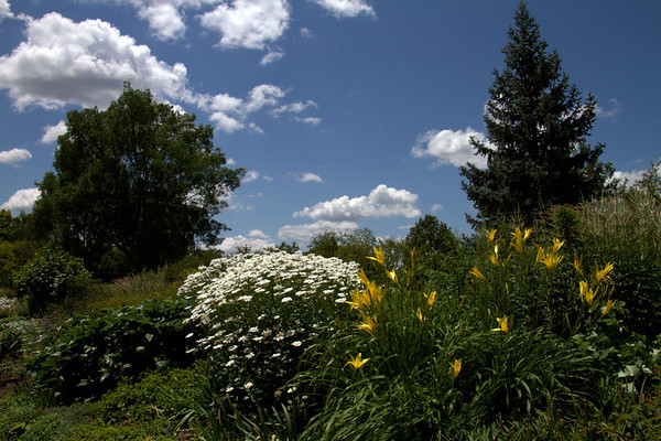 Cox Arboretum Dayton Ohio