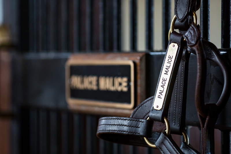 Palace Malice at Three Chimneys 10.10.19