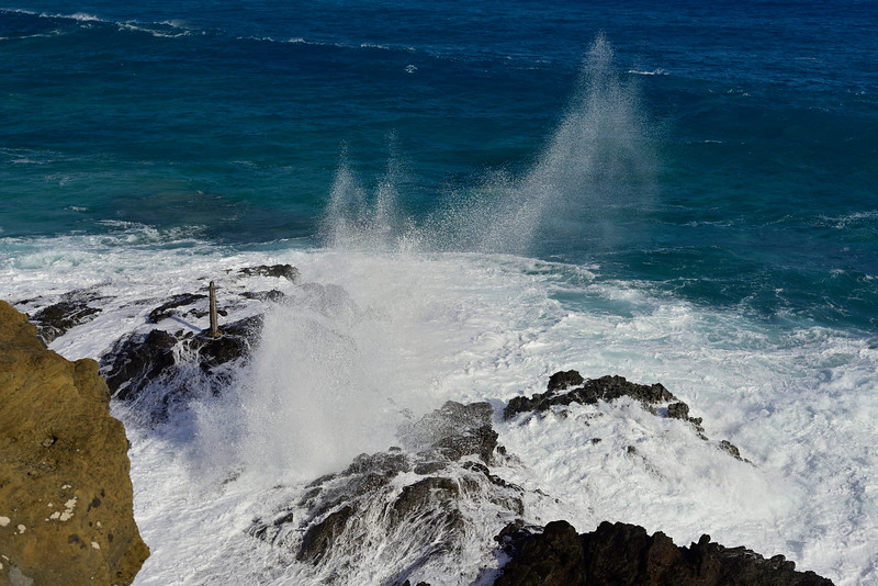 2017-Hawaii_163.jpg