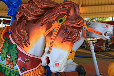Over the Jumps Carousel
