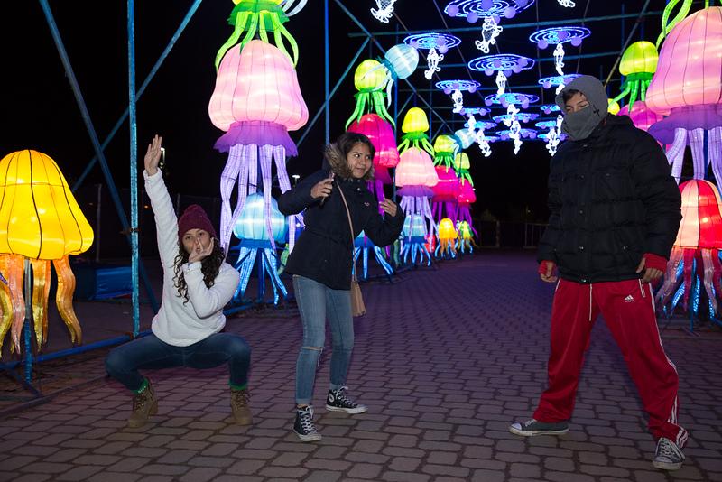 dragon lights 2018-7853.jpg