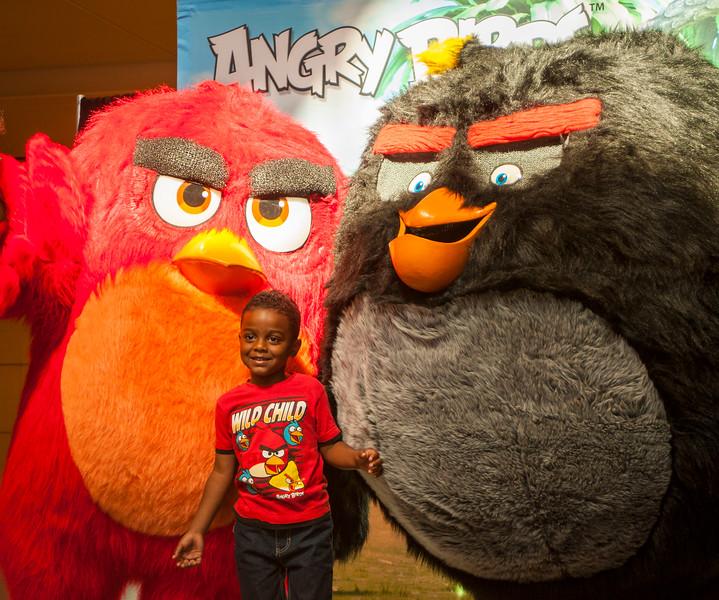 Angry Birds StoneCrest Mall 86.jpg