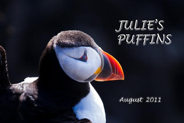 Julie's Puffins 2011