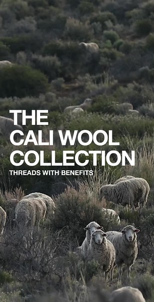 Cali Wool_IG STORY_Frame 1.mp4